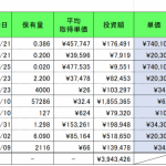 仮想通貨(暗号資産)保有実績 2019年5月末